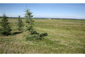 4 4141 Twp Rd 340, Rural Mountain View County