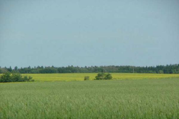 0 A51069 HWY 814 Highway, Rural Leduc County