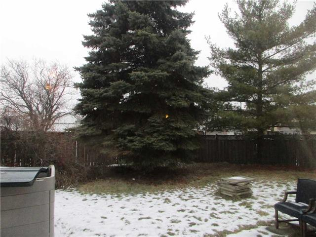 Listing W3701845 - Thumbmnail Photo # 18