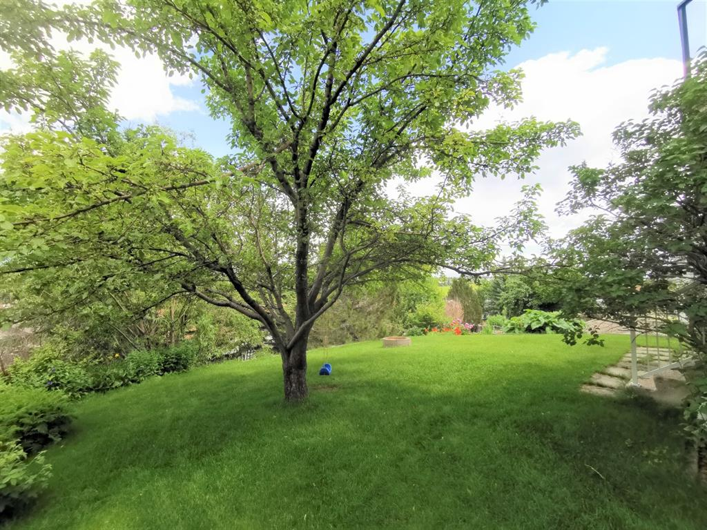 Listing A1011650 - Large Photo # 25