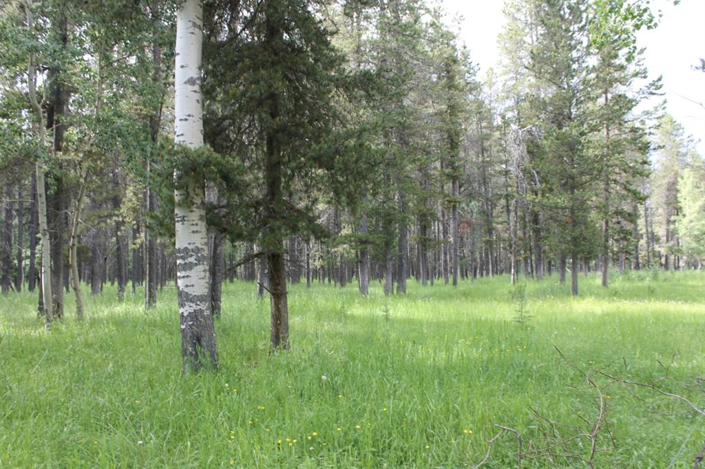 Listing A1014995 - Large Photo # 19