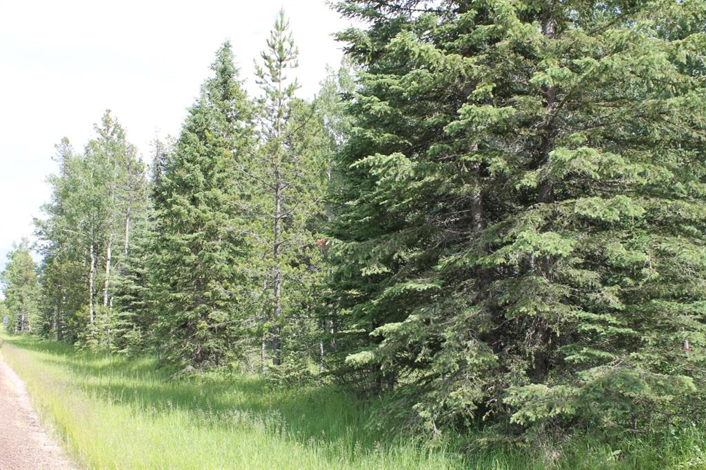 Listing A1014995 - Large Photo # 24