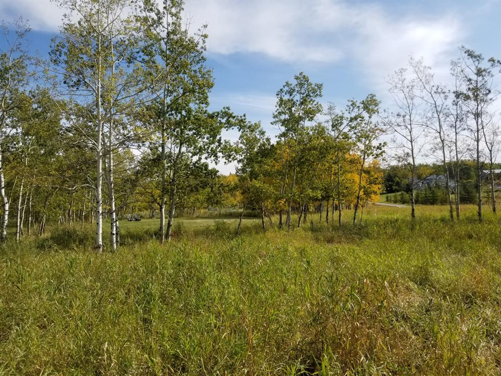 Listing A1016944 - Large Photo # 8