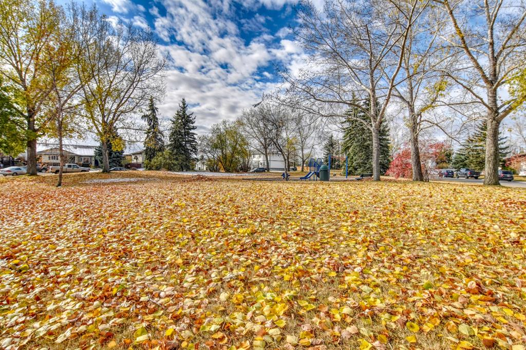Listing A1023289 - Large Photo # 11