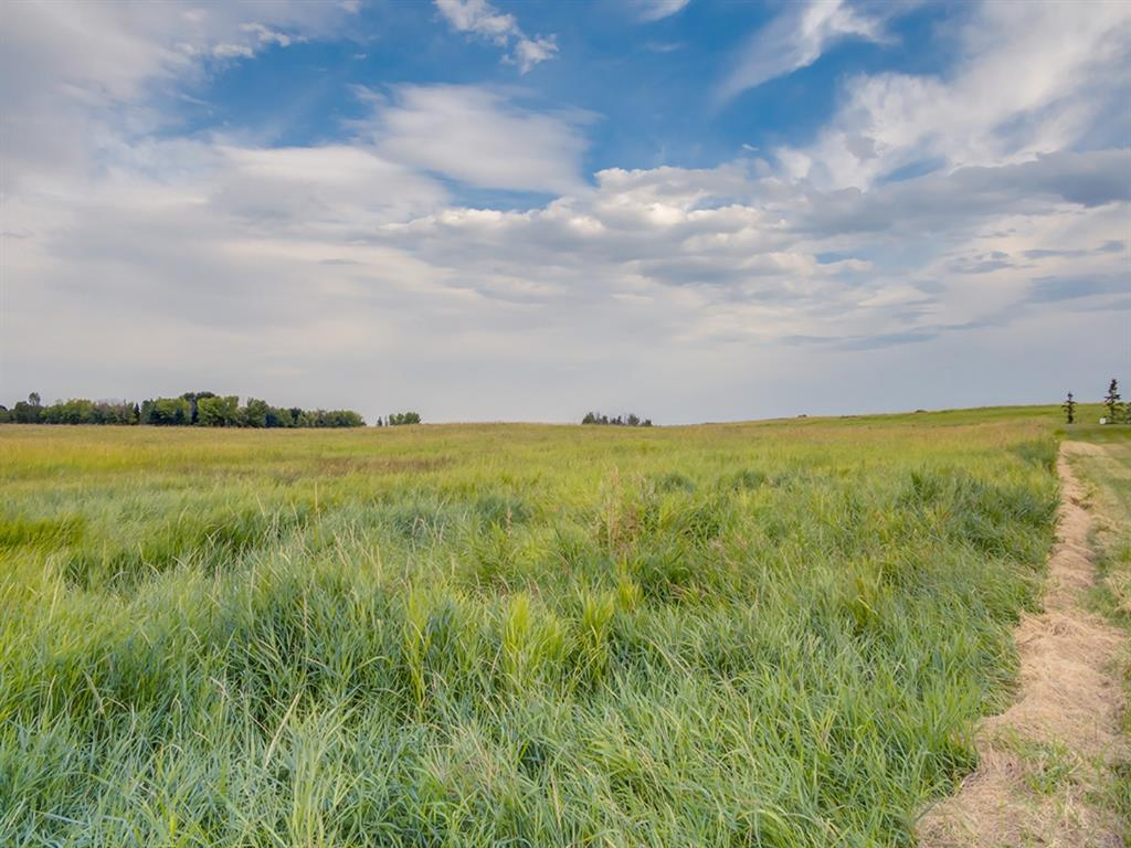 Listing A1025960 - Large Photo # 6