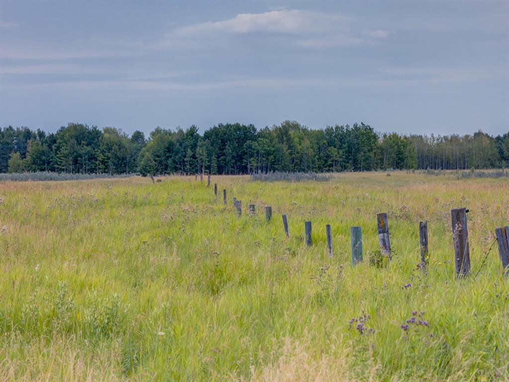 Listing A1025960 - Large Photo # 8