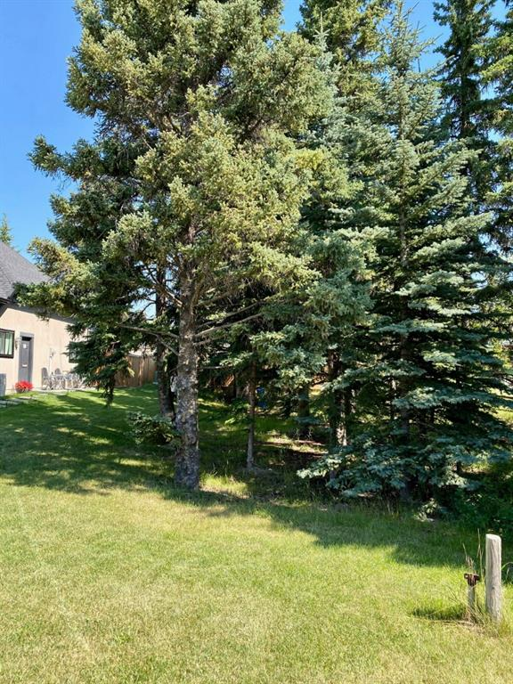 Listing A1029671 - Large Photo # 2