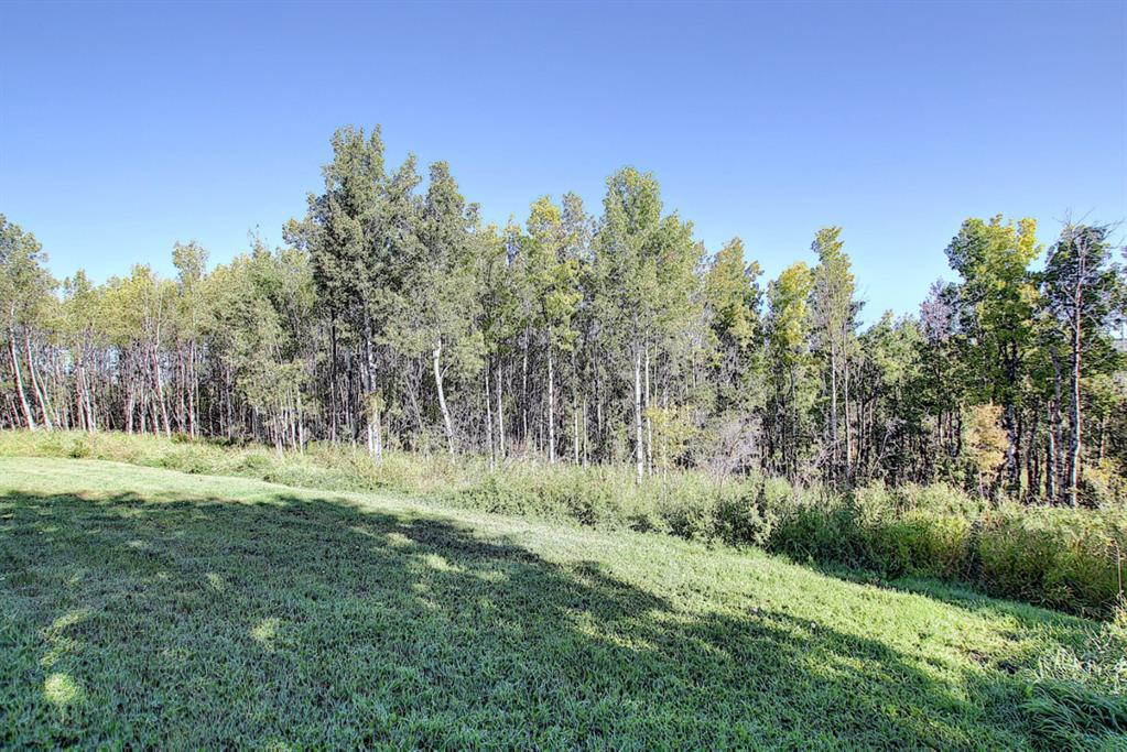 Listing A1032118 - Large Photo # 46