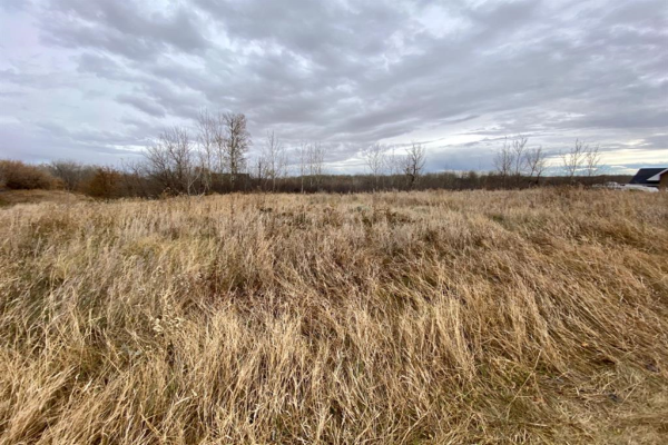 19518 Township Road 452, Rural Camrose County