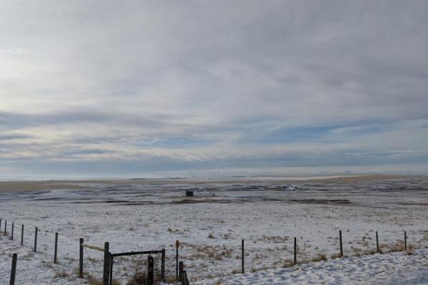 Pasture land, Rural Vulcan County