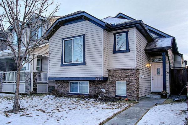 243 Saddlebrook  Way, Calgary