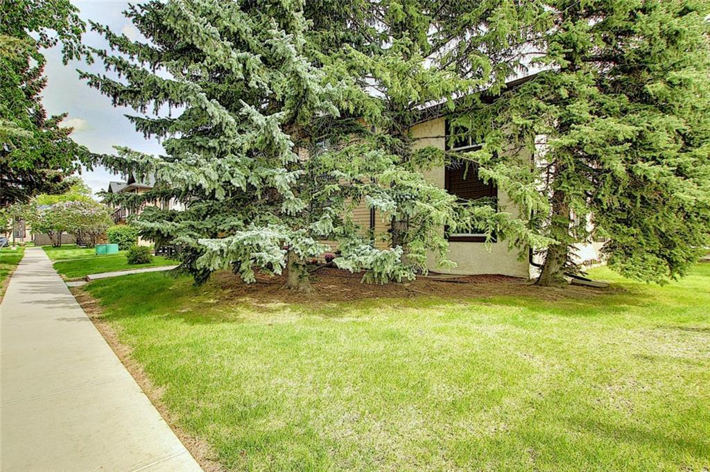 Listing A1059547 - Large Photo # 35