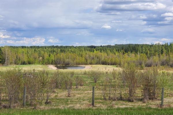 53419B  Range Road 154, Rural Yellowhead County