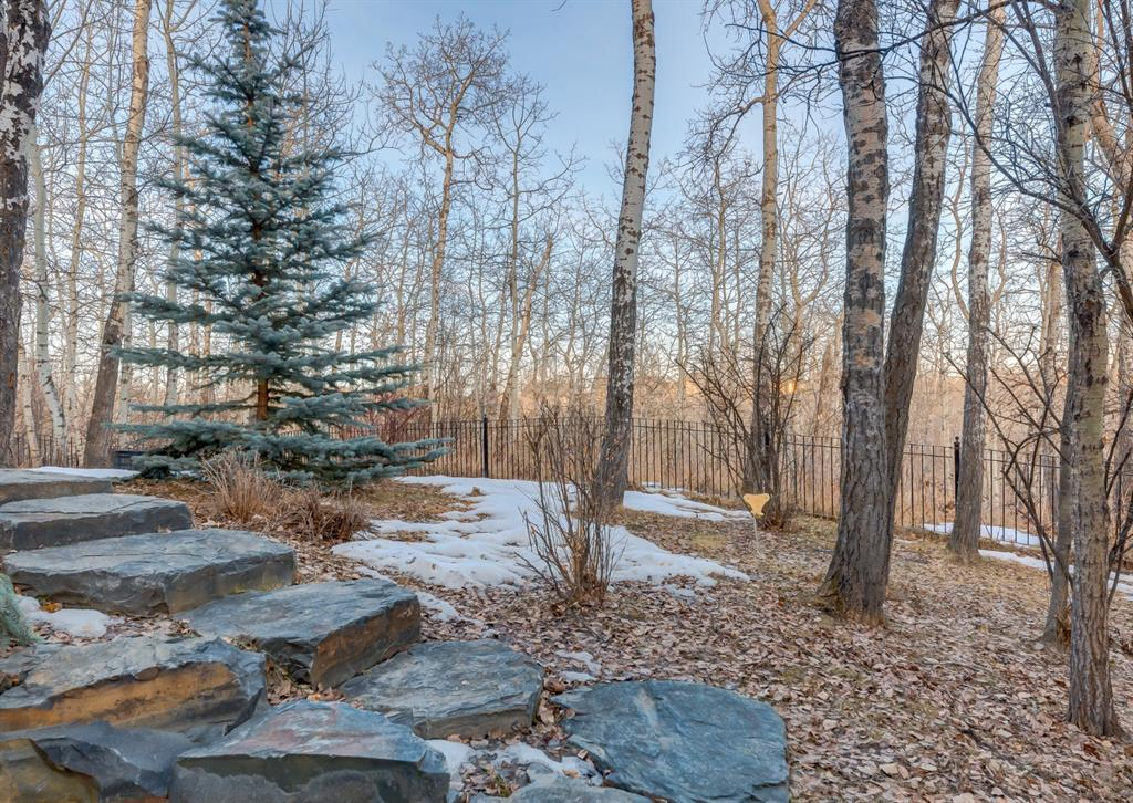 Listing A1082484 - Large Photo # 47