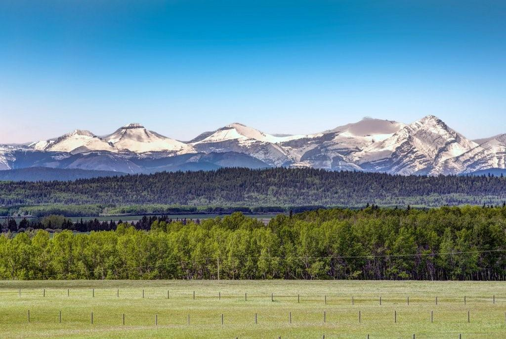 Listing A1083083 - Large Photo # 48