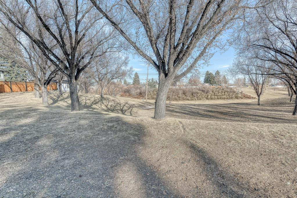 Listing A1083691 - Large Photo # 44
