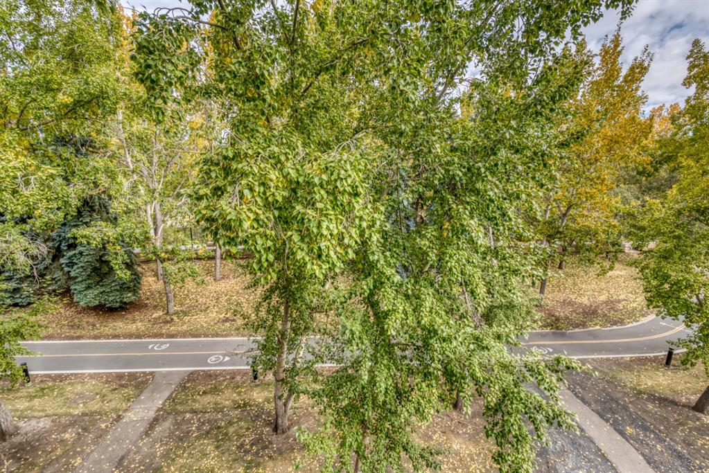 Listing A1102855 - Large Photo # 38
