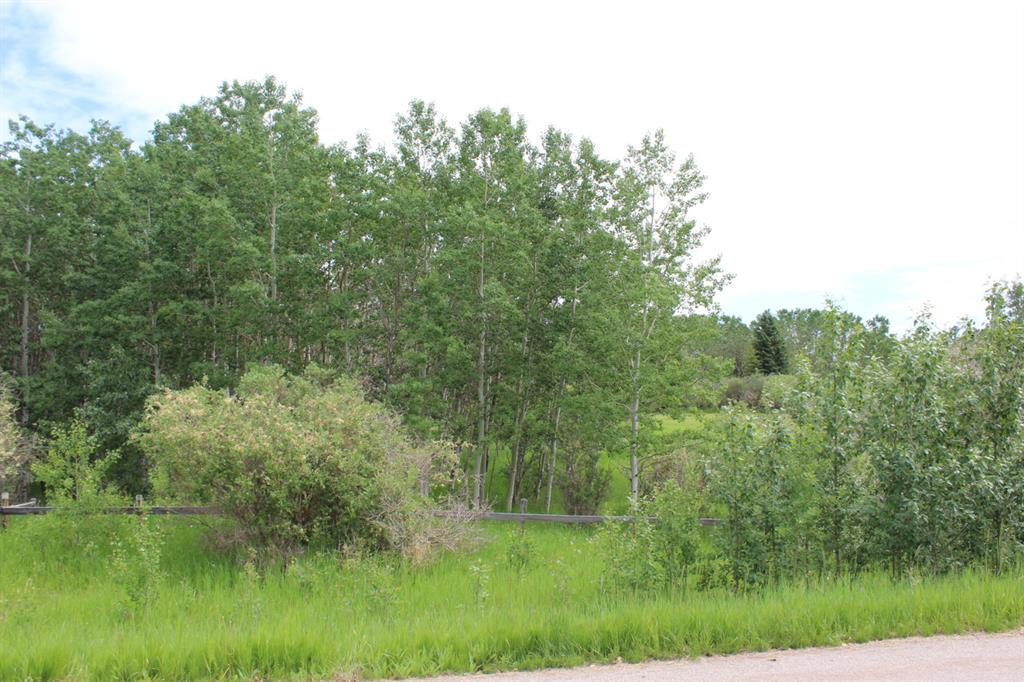 Listing A1107519 - Large Photo # 35