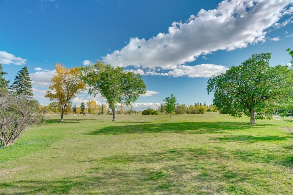 Listing A1113515 - Large Photo # 50