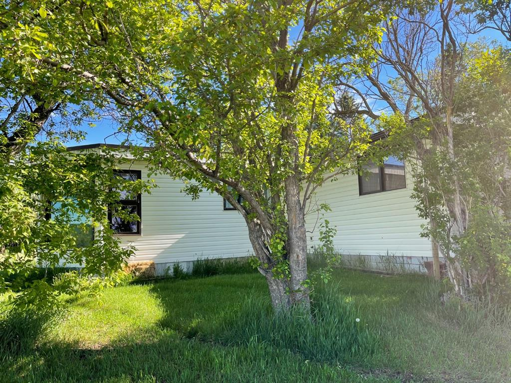 Listing A1118038 - Large Photo # 6