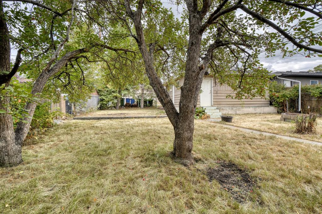 Listing A1141408 - Large Photo # 43