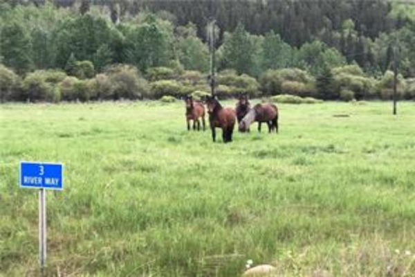 3 River Way, Rural Clearwater County