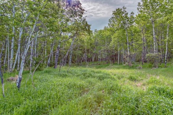 60 Stonewood Dale PL , Rural Rocky View County