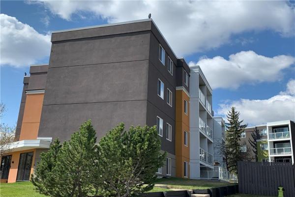 #401C 4455 GREENVIEW DR NE, Calgary