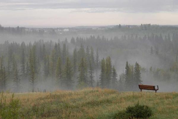 763 SHAWNEE DR SW, Calgary