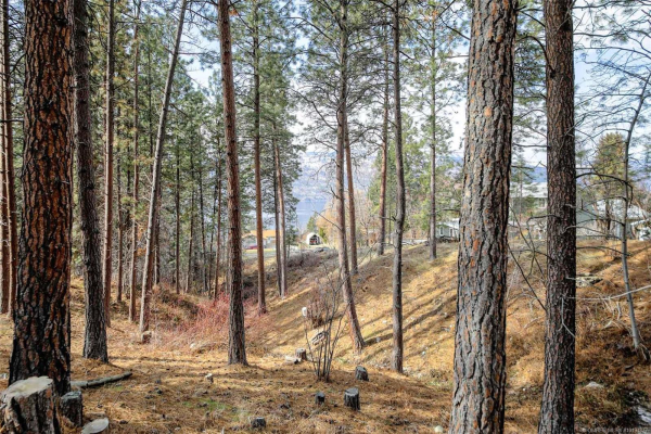 Lot 143 Hare Road,, Lake Country