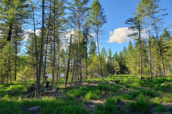 Lot 1 DL 3308       33 Highway,, Beaverdell
