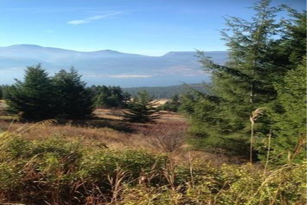 Lot 25 Commonage Road,, Lake Country
