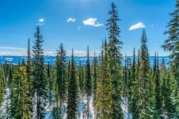 5894 Snow Pines Crescent,, Big White