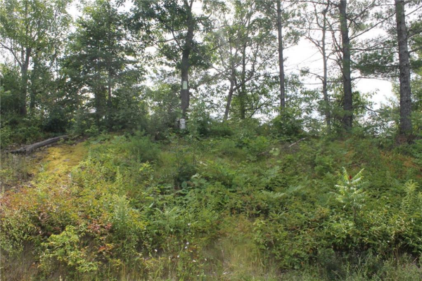 Lot 4 RANTZ ROAD, Petawawa