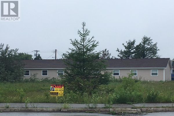93 West Street AND 17 Boland Avenue, Stephenville