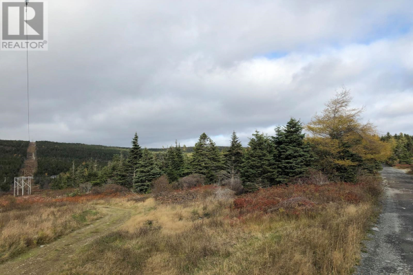 0 Forest Road, Carbonear