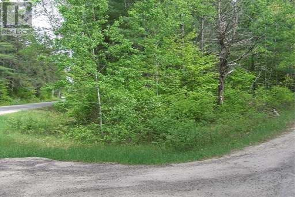 LT 1 FORESTRY ROAD, Chalk River