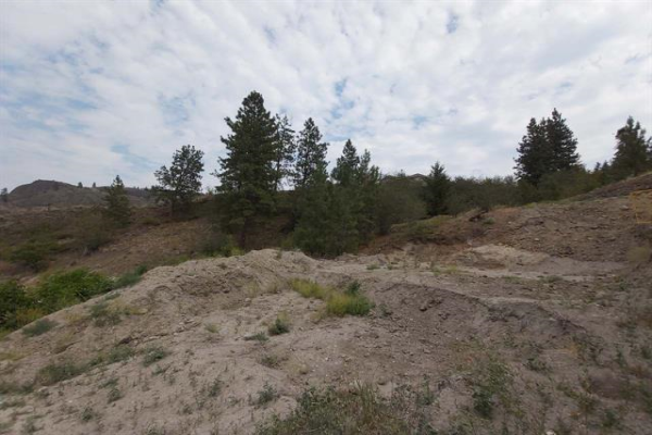 #109 10903 DALE MEADOWS Road,, Summerland