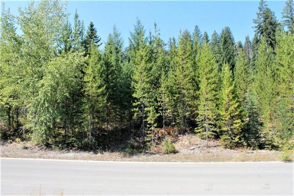 17 DRIFTWOOD Place, Elkford