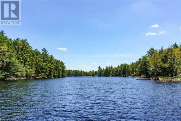 303 NINE MILE LAKE Shore, Muskoka Lakes