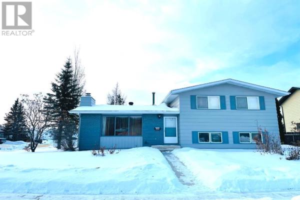 356  Cochrane Crescent, Fort McMurray