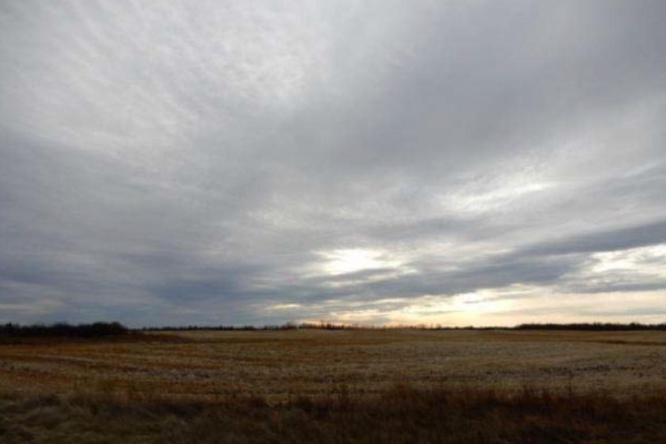 Range Road 204 & Twp. Rd. 604, Rural Thorhild County