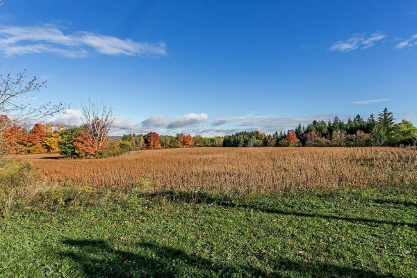 LOT 8 6131 WILLOWGROVE Trail, Burlington