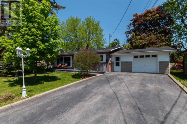 19 Henry CRES, Loyalist
