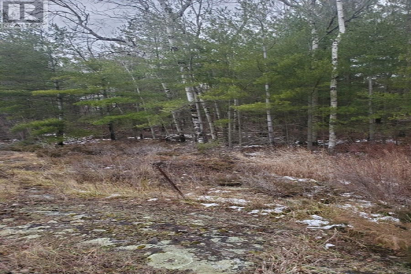 Lot 16A Highway 38, Central Frontenac