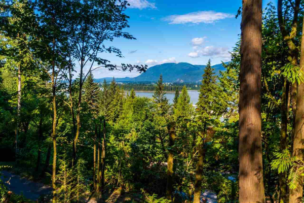 42972 OLD ORCHARD ROAD, Chilliwack