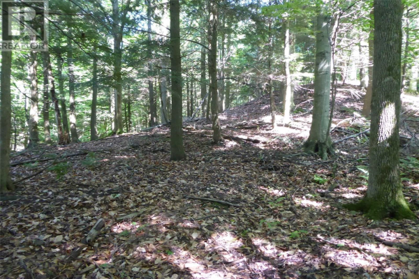 LOT 21 BAYSHORE RD, Meaford