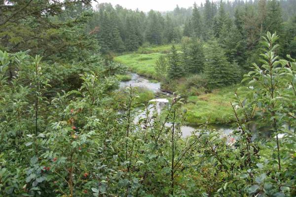 55119A Rge Rd 23, Rural Lac Ste. Anne County
