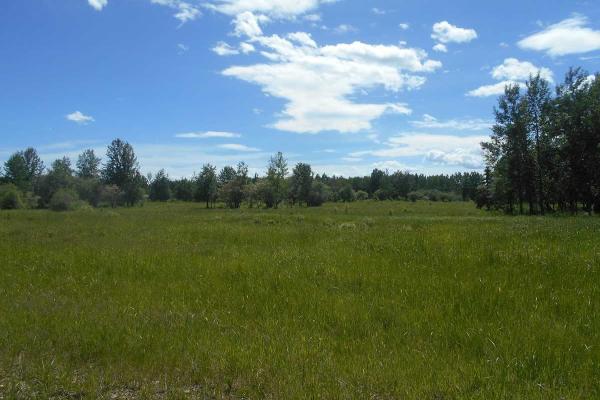 Twp. 474 & Rng. Rd. 74, Rural Brazeau County