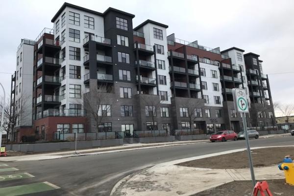 401 10518 113 Street, Edmonton